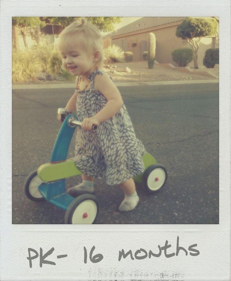 Pk 16 months