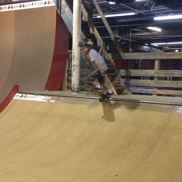 Dax skateboarding 1 | liz eaton designs