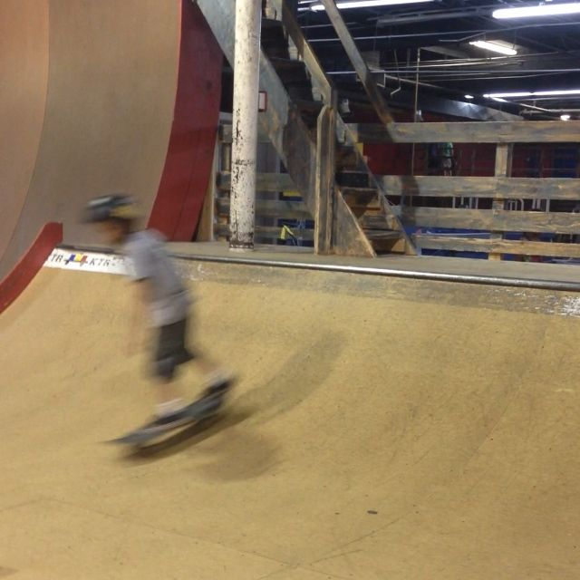 Dax skatingboarding | liz eaton designs
